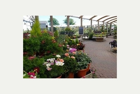 Photo of Gillingham's Orchard Park joins UK?s top garden centres