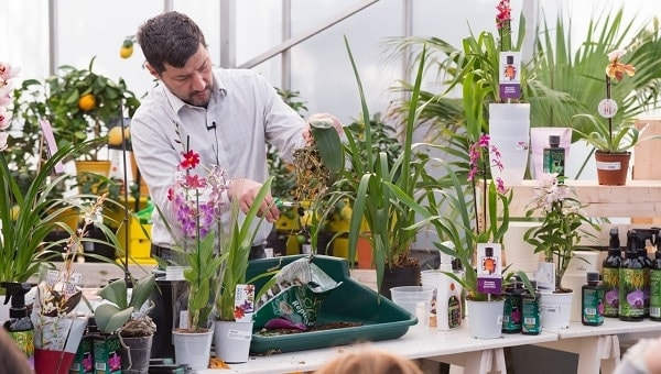 Photo of Plant expert to visit Perrywood Garden Centre for talks and orchid clinics