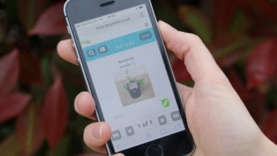 Photo of Farplants transform plant ordering with web and mobile friendly trade portal