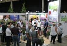 Photo of Farplants scoop five awards at the HTA National Plant Show