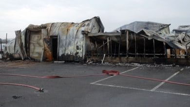 Photo of Strikes Garden Centre to Rise from the Ashes with Spaciotempo?s help