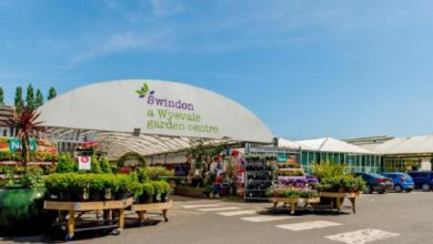 Photo of Swindon's Wyevale garden centres go on sale to local entrepreneurs