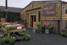 Photo of Angel Gardens garden centre opens outside Worcester