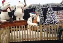 Photo of Winter Wonderland and garden centre forced to close