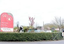 Photo of Garden centres and plant growers fight for survival