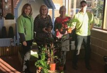Photo of Haskins West End donates houseplants to Primary School
