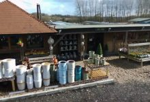 Photo of Garden centre in Sussex catches thieves on CCTV