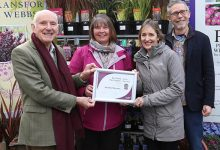 Photo of Squires annual plant show sees success