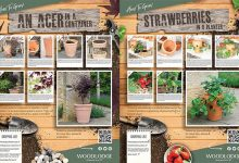 Photo of Woodlodge helping inspire new gardeners with virtual sales assistants