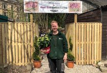 Photo of West End Garden Centre to open on site of first ever international football match