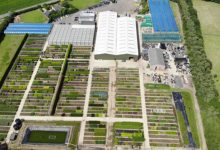 Photo of Yougarden buyout supported by Kester Capital