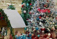 Christmas at Haskins