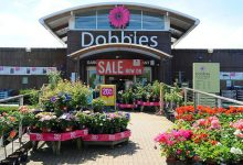 Photo of Dobbies to reopen stores in England