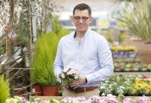 Photo of Dobbies supports Virtual Chelsea Flower Show