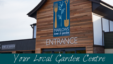 Photo of Marlows Garden Centre forced to close due to poor trading conditions