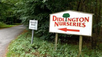 Photo of Didlington Nurseries Garden Centre reopens after early hours fire