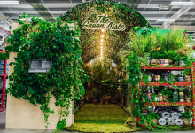 Photo of Homebase launches UK's first 'Green Aisle'