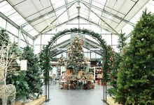 Photo of Dobbies research shows Christmas 2020 more meaningful to almost half of 25-34 year olds