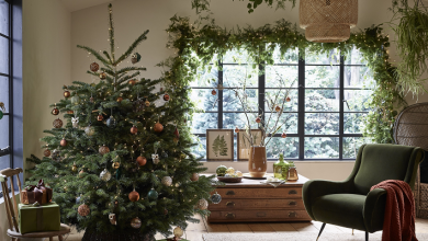 Photo of Dobbies launches series of Christmas podcasts