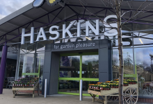 Photo of Haskins to remain closed on Boxing Day for staff wellbeing