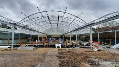 Photo of Construction of large canopy commences at Norfolk garden centre