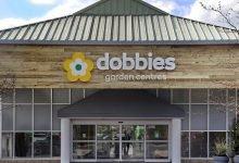 Photo of Dobbies reveals impressive FY19/20 sales