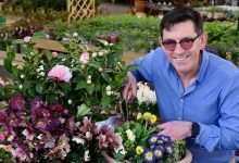Photo of Dobbies launches virtual gardening events this spring