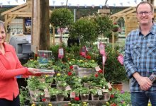 Photo of Squire's Garden Centre Reigate receives GCA GROW training award