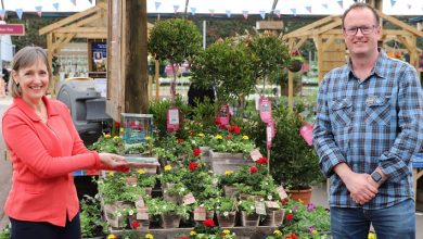 Photo of Squire's Garden Centre Reigate receives GCA GROW training award