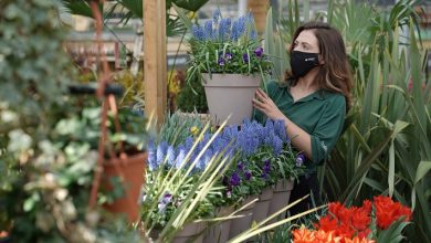Photo of Dobbies' launches sustainability campaign