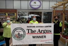Photo of Haskins Roundstone wins local 'Garden Centre of the Year' award