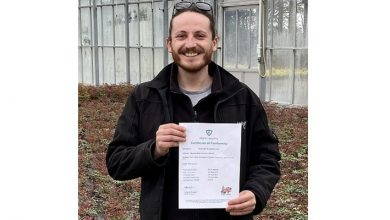 Photo of Wyevale Nurseries receives Plant Healthy Certification