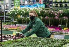 Photo of Dobbies relaunches initiative to support local communities across the UK