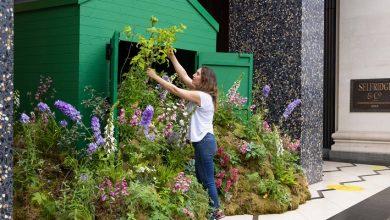 Photo of Selfridges opens in-store garden centres amid gardening boom