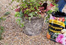 Photo of Bathgate: Helping garden centres to grow sales