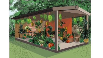 Photo of Award winning urban garden centre launches Houseplant Studio at RHS Chelsea