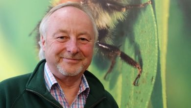 Photo of Founder of Wildlife World steps down as managing director after 22 years
